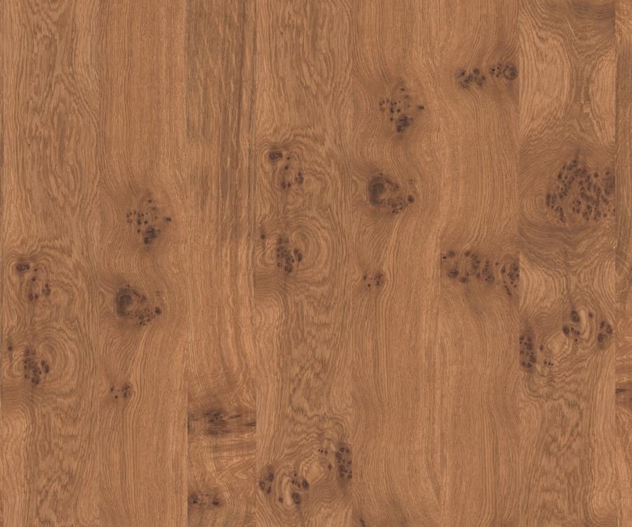 furnierspan roh elemento design yourself ma m bel per mausklick. Black Bedroom Furniture Sets. Home Design Ideas